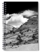 Zion National Park In Black And White Spiral Notebook