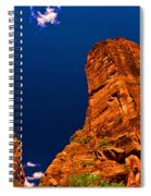 Zion National Park Oil On Canvas Spiral Notebook