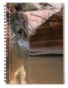 Zion Puddle Spiral Notebook