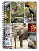 Zoo Collage Spiral Notebook