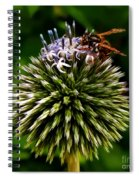 Zoom Spiral Notebook
