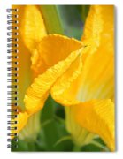 Zucchini Flowers In May Spiral Notebook