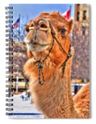 And To The Republic For Which It Stands    Spiral Notebook