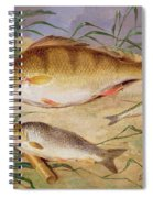 An Angler's Catch Of Coarse Fish Spiral Notebook