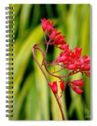 Coral Bells Blooming Spiral Notebook