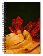 Delicious Spiral Notebook