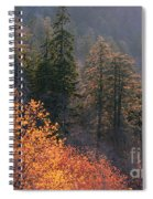 Great Smoky Mountains Morning Spiral Notebook