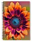 Orange Flowers In Their Buttonholes Spiral Notebook