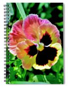 Pink And Yellow Pansy Spiral Notebook