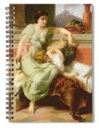 Pompeii Spiral Notebook