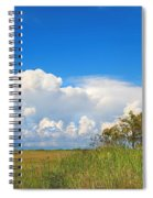 Shark River Slough - 1 Spiral Notebook