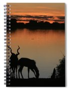 South African Sunset Spiral Notebook