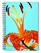 Turquoise And Tiger Lily Spiral Notebook