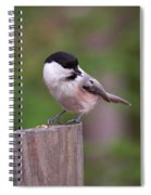 Willow Tit With Seeds Spiral Notebook