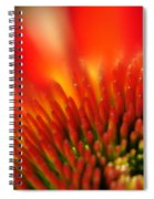 0001 Echinacea Pow Wow Sunrise Spiral Notebook