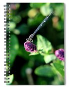 0003 Dragonfly Yoga On A Salvia Burgundy Candle Spiral Notebook
