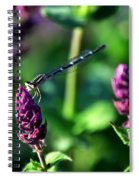 0004 Dragonfly Yoga On A Salvia Burgundy Candle Spiral Notebook