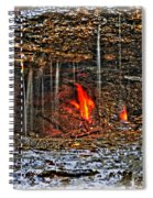 0004 Natural Elements Spiral Notebook