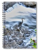 0005 Blue Heron At Glen Falls Williamsville Ny Spiral Notebook