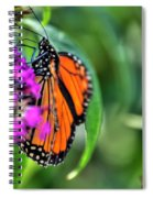 001 Making Things New Via The Butterfly Series Spiral Notebook