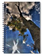 001 Reaching For The Sky Spiral Notebook
