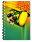 001 Sleeping Bee Spiral Notebook