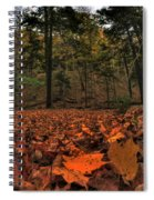 0013 Letchworth State Park Series Spiral Notebook