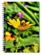 002 Busy Bee Series Spiral Notebook