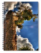002 Reaching For The Sky Spiral Notebook