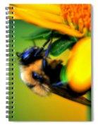 002 Sleeping Bee Series Spiral Notebook