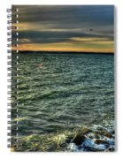 003 In Harmony With Nature Series Spiral Notebook