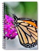 004 Making Things New Via The Butterfly Series Spiral Notebook