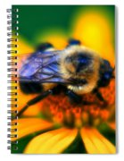 005 Sleeping Bee Series Spiral Notebook