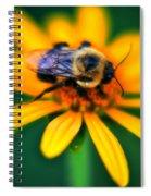 006 Sleeping Bee Series Spiral Notebook