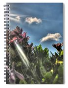007 Summer Sunrise Series Spiral Notebook