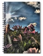 008 Summer Sunrise Series Spiral Notebook