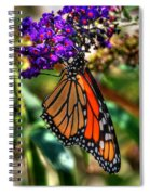 011 Making Things New Via The Butterfly Series Spiral Notebook
