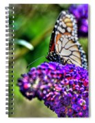 012 Making Things New Via The Butterfly Series Spiral Notebook