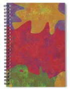 0146 Abstract Thought Spiral Notebook