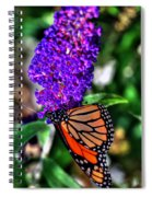 015 Making Things New Via The Butterfly Series Spiral Notebook