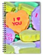 04 Valentines Series Spiral Notebook