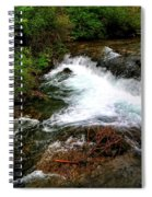 05 The Three Sisters Island Spiral Notebook