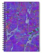 0528 Abstract Thought Spiral Notebook