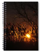 06 Sunset Spiral Notebook