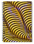 0647 Abstract Thought Spiral Notebook