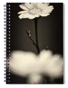 Dark Daisy  Spiral Notebook