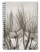A Delicate World Monochrome Spiral Notebook