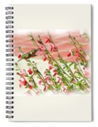 A Garden Delight Spiral Notebook