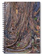 Abstarct Flood Spiral Notebook