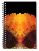 Abstract 204 Spiral Notebook